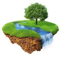 nadzemní bazény strom